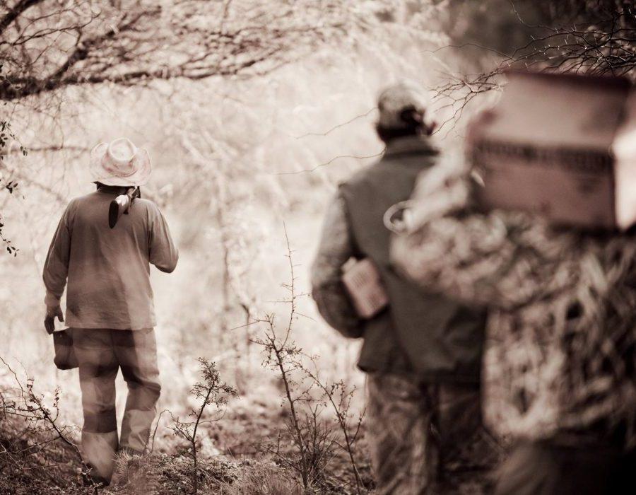 Argentina Mixed Bag Bird Hunting