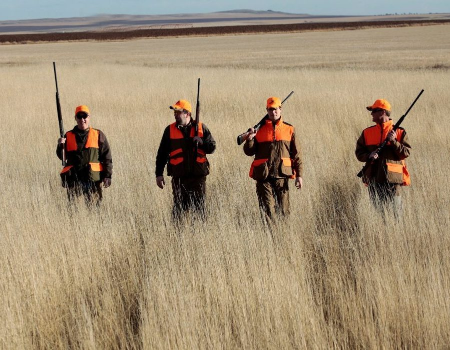 South Dakota Pheasant Hunt - Pierre