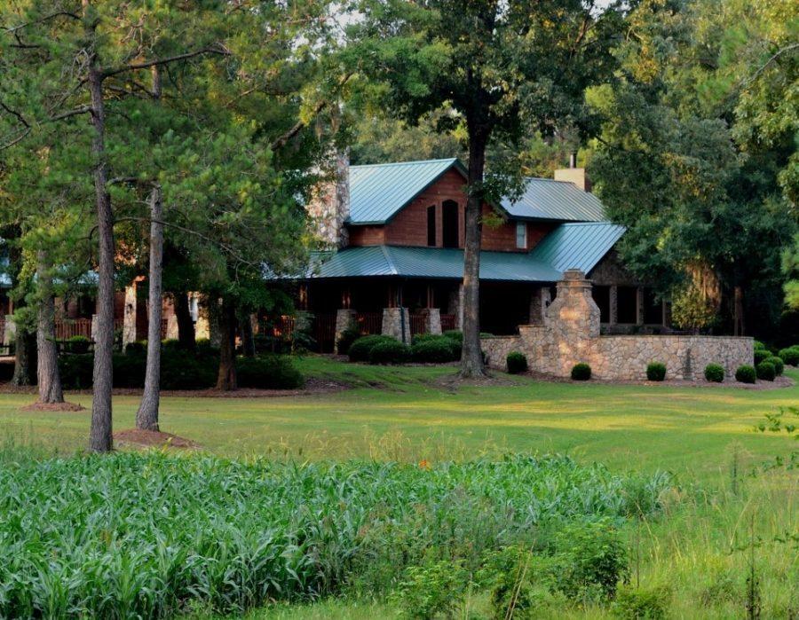 Georgia Quail Plantation - Albany