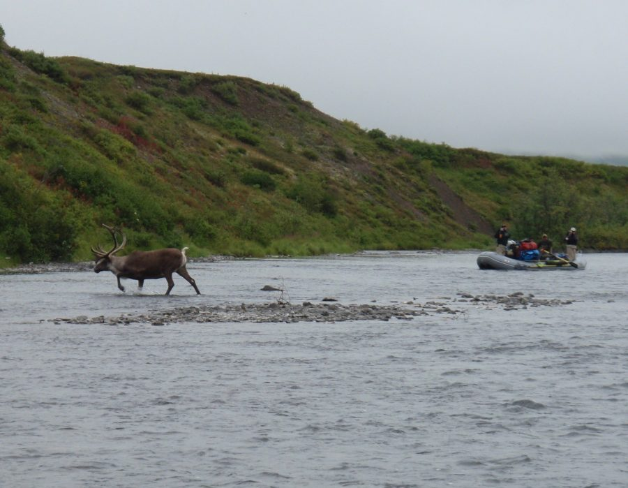 Alaska Float Fishing Trip