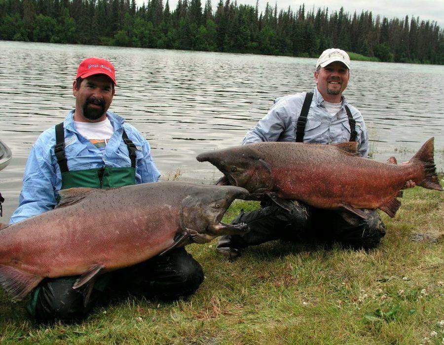 Alaska Kenai River Fishing: Freshwater & Saltwater