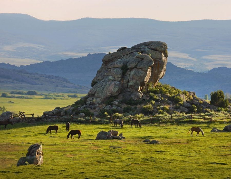 Wyoming Upland Hunting, Fishing, Horseback & Spa