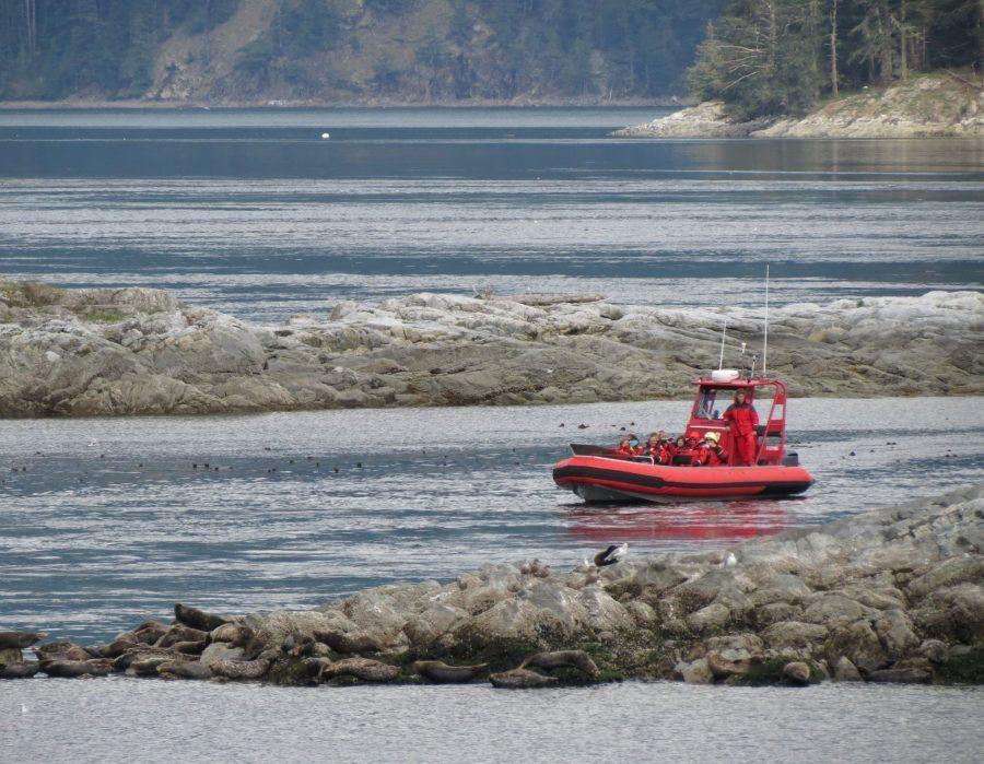 British Columbia Luxury Fishing & Eco Touring