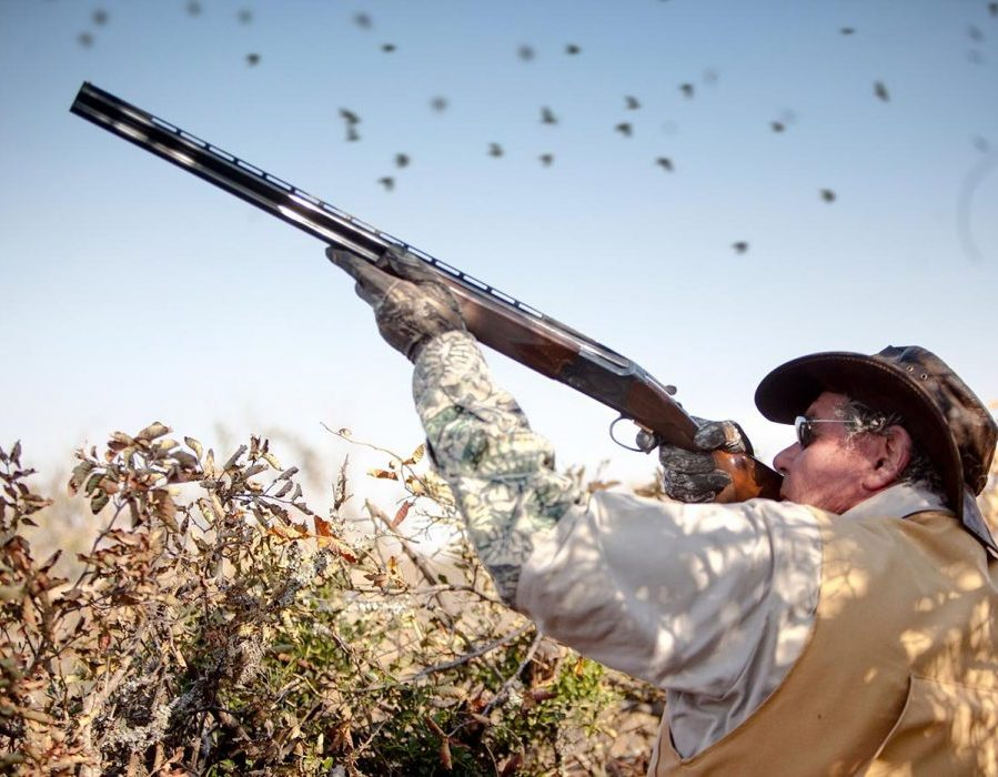 Argentina Luxury Dove Hunting