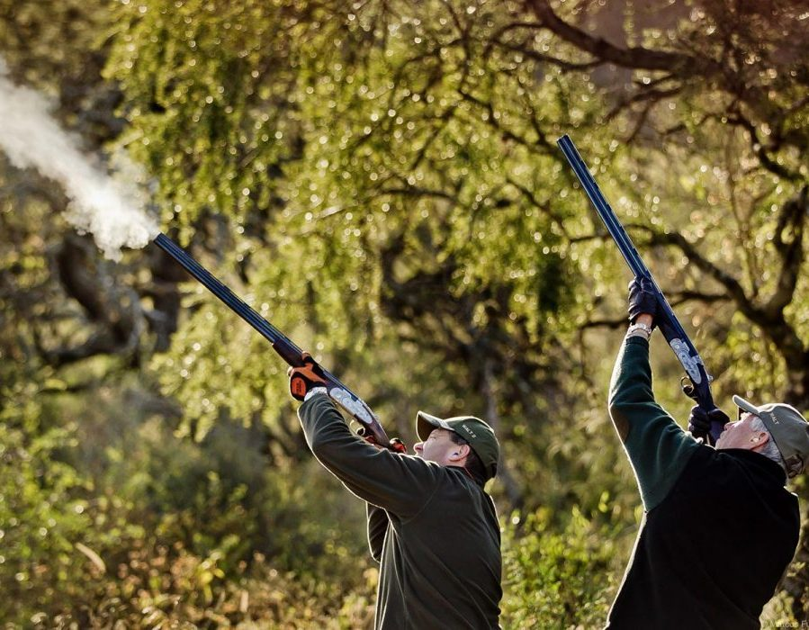 Argentina Dove Hunt - Small Lodges