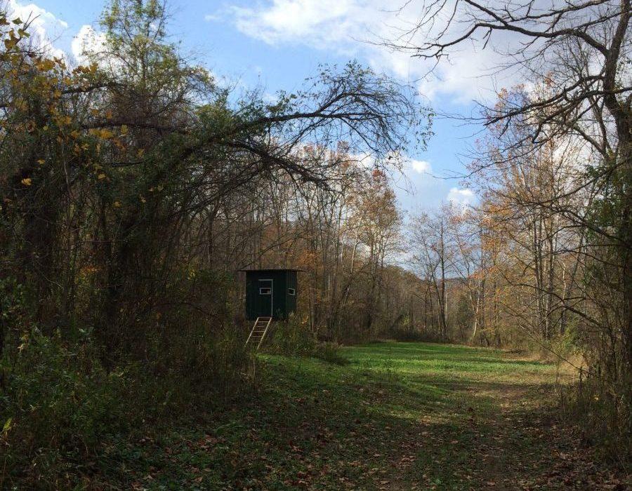 Kentucky Whitetail Hunt