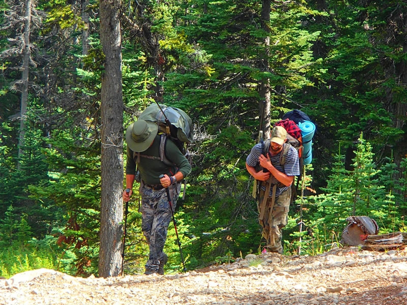 British Columbia Wolf Hunt & Big Game