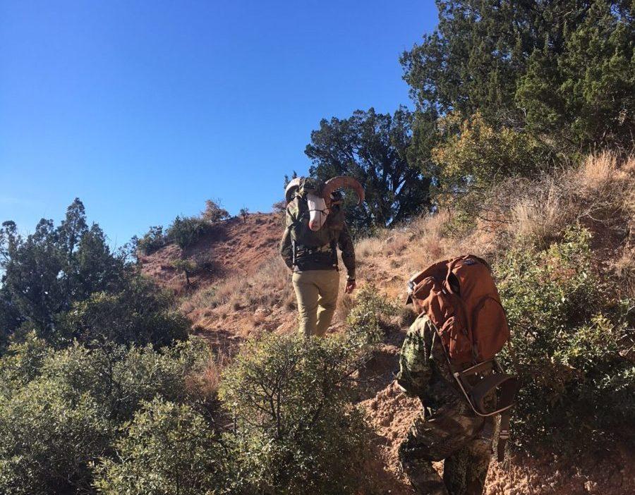 Texas Aoudad Hunt - Palo Duro Canyon
