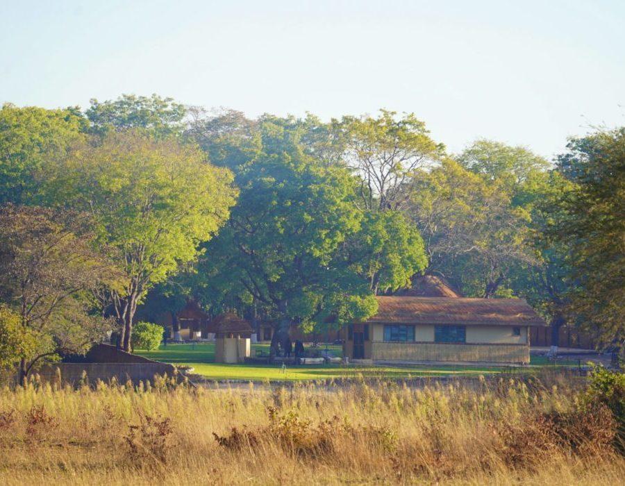 Zambia Dangerous Game Safari